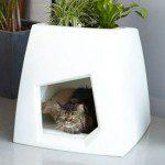 Design voor je huisdier