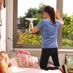 Test; Black+Decker Window Washer