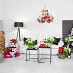 Haal de Kerstster in je huis