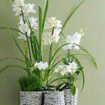 Fleur je huis op met de Orchidee