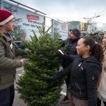 IKEA Nordmann Kerstboom voor 1 piek actie